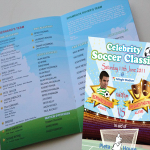 A5 Self Cover Booklets printing on 130gsm, 170gsm silk and gloss. Clickprinting.ie for A5 booklet design