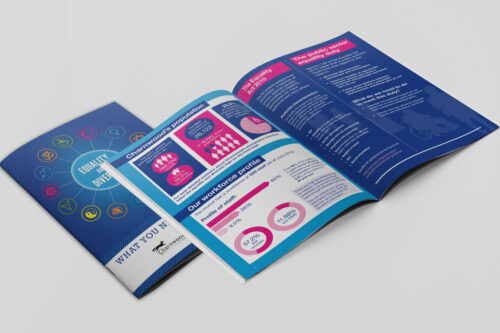 A4 booklet / Magazine or heavy booklet printing, cover on 300gsm silk with inner pages on 130gsm, 170gsm, 250gsm silk and gloss. Clickprinting.ie for A4 heavy booklet design